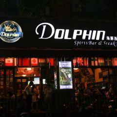 Dolphin User Photo
