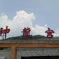 Shenlong Palace User Photo