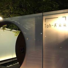 Toh-A User Photo