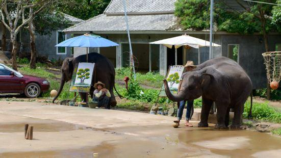Elephant Carer Home