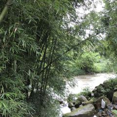 Guanyin Mountain User Photo