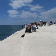 Sea Organ User Photo