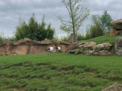 博瓦爾動物園