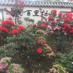 Paragon Garden User Photo