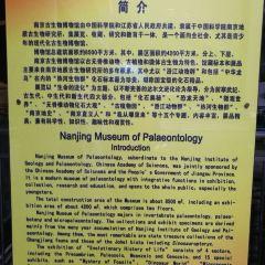 고생물박물관 여행 사진