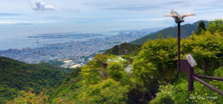 Mount Rokko3