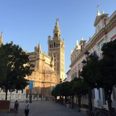 Seville Cathedral User Photo