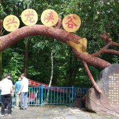 興龍峽谷用戶圖片