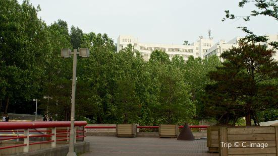 弘大畢卡索街