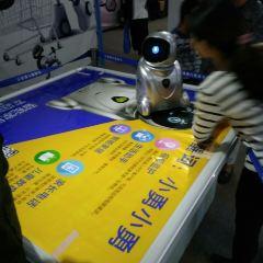 幻影機器人莊園用戶圖片