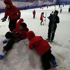 冰河世紀滑雪場用戶圖片