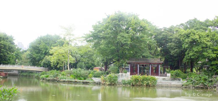 Guangzhou Lichee Bay Cruise3