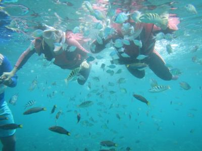 Mengalum Diving