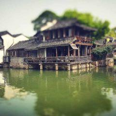 水鄉小鎮用戶圖片