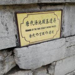 唐禦湯遺址用戶圖片