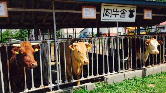 Heidi Farm