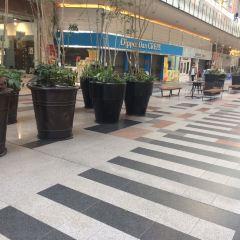 神戶港樂園用戶圖片