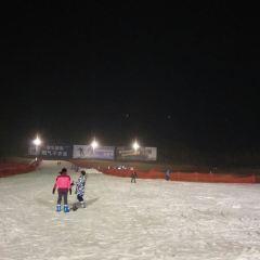 梅園滑雪場用戶圖片