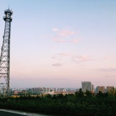 白泉山生態公園用戶圖片