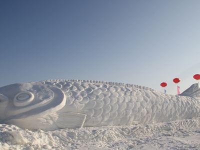 鴜鷺湖滑雪場