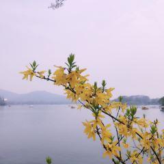 잉저우 여행 사진