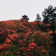 단채완다마을 여행 사진