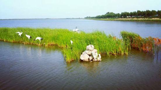 大安嫩江灣國家濕地公園