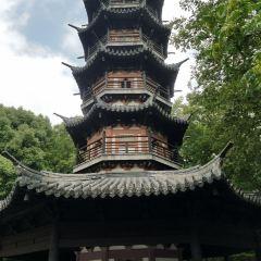 Xiudaozhe Guta User Photo