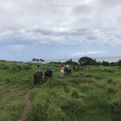 쿠알로아 랜치 여행 사진