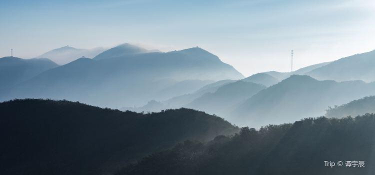 大圍山國家森林公園2