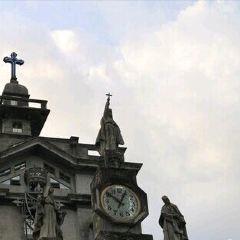 University of Santo Tomas User Photo