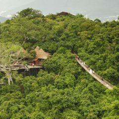 야룽완 열대천당삼림공원(아룡만 열대천당삼림공원) 여행 사진