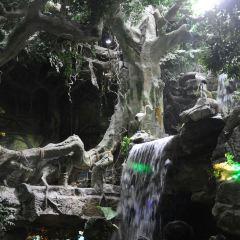 구이저우 오션월드 여행 사진