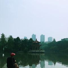 北湖公園用戶圖片