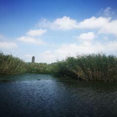 Dazong Lake Wetland User Photo