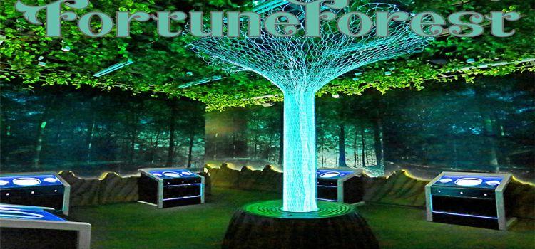 命運森林1