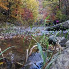 Kuangzigou Ecological Scenic Area User Photo