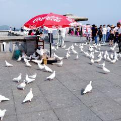 바이위산 경관 지역 여행 사진