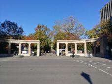 麦吉尔大学-蒙特利尔-cg****d