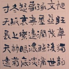 Sichuan Art Museum User Photo