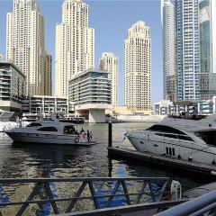 Dubai Yacht Tourism User Photo