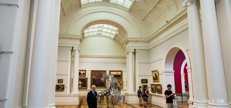 Art Gallery of New South Wales1