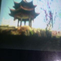 北望亭用戶圖片