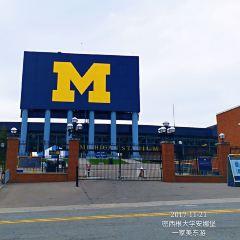 Michigan Stadium用戶圖片