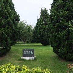 百花苑用戶圖片