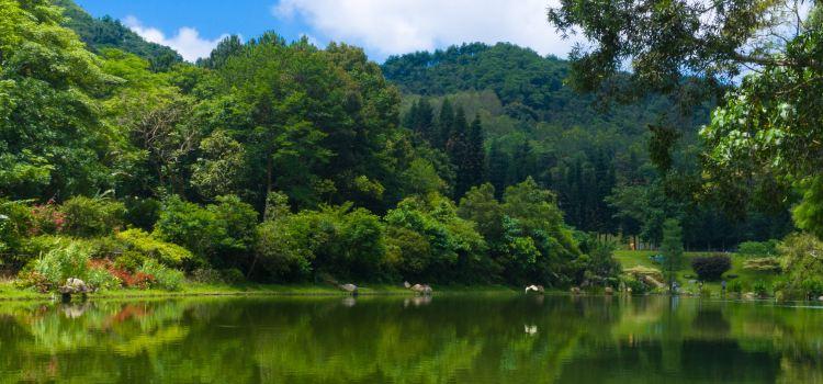Fairylake Botanical Garden3