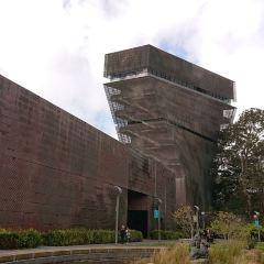 狄楊博物館用戶圖片