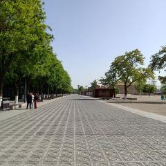 大明宮國家遺址公園用戶圖片