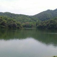 Huangpodong Reservoir User Photo