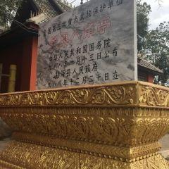 Jingzhen Octagonal Pavilion User Photo